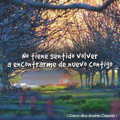 Este mensaje fue compartido vía Andrés Cepeda Best Frieds, Sing To Me, Decir No, Life Quotes, My Love, Words, Movie Posters, Movies, Oem