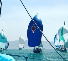 #springiscomming#warmydays#regatta#rainhadamelia#downwind#saillovers#sailinglife#yachtlife #coolisbon#mylovelylisbon#taguslovers#riverlovers#sealovers#saltymoments #tejo #tagus #lisboa #lisbon #lissabon #lisbonne #lisbona #lissabonin #里斯本 #リスボン #Лиссабон #لشبونة #portugal #thankyouplanetearth #fromlisbonwithlove @taguslovers Book online @ http://ift.tt/2lSbRDk Like us @ http://ift.tt/2lIuUjr