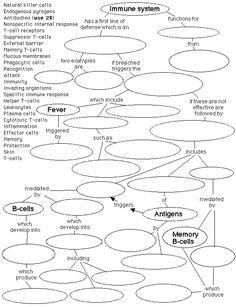 worksheet. Immune System Worksheet. Grass Fedjp Worksheet Study Site