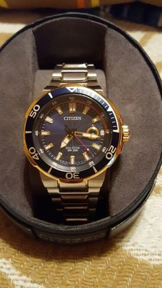 Citizen Endeavor AW1424-54L