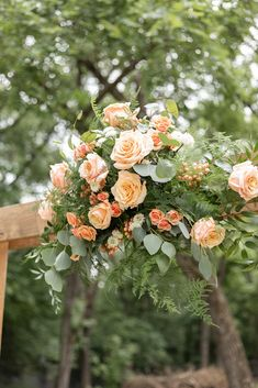 Peachy, summery blooms for a small, intimate backyard wedding. Arbor accent piece with peach roses and mixed foliage by Rose of Sharon Floral Design Studio in Fayetteville, Arkansas. #microwedding #smallwedding #peachwedding #peachweddingflowers #weddingflowers #summerwedding #summerweddingflowers #weddingceremony #arbor #arborflowers Rose Wedding, Summer Wedding, Wedding Flowers, Peach Color Palettes, Rose Of Sharon, Spray Roses, Wedding Ceremony, Reception, Beautiful Roses
