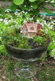 fairy Garden  --  how sweet