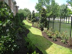 landscaping-landscape-design-wrought-iron-fence-envy-exteriors-