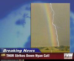 Breaking News: THOR strikes down Nyan Cat.
