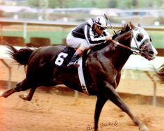 Ronas Ryon had talent and luck on his side when it came to running a race. He was inducted into the Hall of Fame in 2004. Learn more about the AQHA Hall of Fame inductees at http://aqha.com/Foundation/Museum/Hall-of-Fame/Hall-of-Fame-Inductees.aspx .