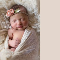 East Peoria Illinois Newborn Photographer, MapleSeeds Photography