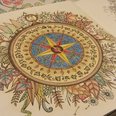 Adult Coloring Book Enchanted Forest Johanna Basford Compass Done