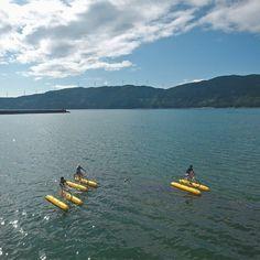 陸・海・空の境界線で癒される。絶景・佐田岬をまるごと満喫 愛媛づくり 「colocal コロカル」ローカルを学ぶ・暮らす・旅する