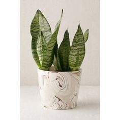 Marble 7.5 Planter (62 CAD) ❤ liked on Polyvore featuring home, outdoors, outdoor decor and urban outfitters