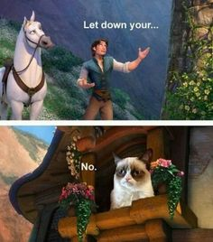 Princess Grumpy Cat  I laughed for WAY too long about this