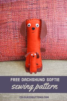 dachshund dog softie