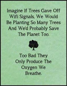 Plant more trees!