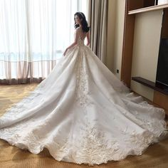 Melta Tan dramatic full ball gown wedding with exquisite lace detailed appliqués and draped pearl strands back Evening Dresses For Weddings, Bridal Dresses, Wedding Gowns, Bride Book, Lace Detail, Marie, Ball Gowns, Fashion Design, Style Fashion