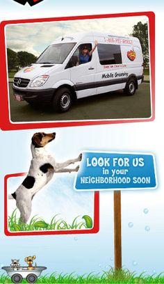 14 best start a mobile pet grooming business images mobile pet rh pinterest com