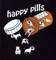 Bull Terrier Funny, Bull Terrier Tattoo, Mini Bull Terriers, Miniature Bull Terrier, English Bull Terriers, Happy Pills, Dog Art, Mans Best Friend, Animal Drawings