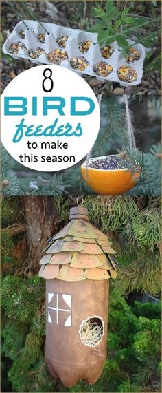 8 Bird Feeders and Bird Houses.  Bring the birds to your yard using recycled materials.  Repurpose items you already have to view the beauty of little feathered friends.  Bird feeders even the kids can make.