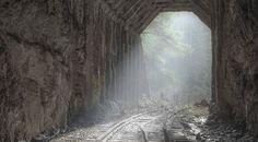 Hike+This+Amazing+Abandoned+Railroad+On+The+Oregon+Coast