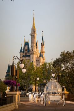 IRL Cinderellas and their Prince Charmings can now rent out Disney World's East Plaza Garden, a gorgeous new wedding spot with luxe views of Cinderella Castle.
