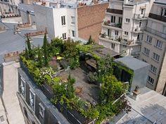 Survoler les toits parisiens peut réserver des surprises... Réalisé par le paysagiste Hugues Peuvergne, l'aménagement de ce toit-terrasse fait rêver et nous démontre que le végétal a plus que jamais sa place en ville.