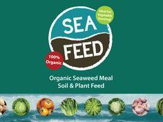 'Seafeed' Organic Seaweed Meal Soil and Plant Feed Seaweed, Gardening, Organic, Meals, Vegetables, Plants, Meal, Lawn And Garden, Vegetable Recipes
