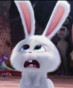 Cute Bunny Cartoon, Cartoon Pics, Cute Cartoon Wallpapers, Snowball Rabbit, Rabbit Wallpaper, Secret Life Of Pets, The Good Dinosaur, Pet Rabbit, Cute Disney Wallpaper