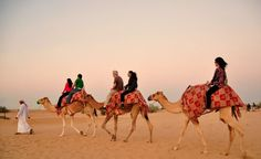 Buy one Morning #DesertSafari at 300 AED and get one for FREE from New York Tours! Avail this exclusive offer from www.akoupon.com.  Offer is valid till 10th June, 2015  #UAEdeals #DubaiDeals #DiscountDealsinDubai #DubaiOffers #DubaiOnlineDeals #DubaiCopuonSites
