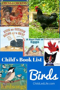 Child's Book List of Birds - great for a homeschooling study of birds for preschoolers or early elementary! Toddlers would like the picture books, too!