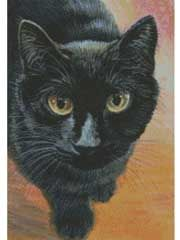 Counted Cross-Stitch Patterns - Attention Cat Cross-stitch Pattern