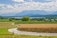 Ausflugsziele rund um Laufen Panorama von Bicheln aus über den Waginger See mit Dachstein und Untersberg im Hintergrund (c) ROHA-Fotothek Fürmann