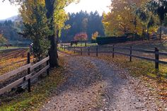 cowichan valley - Google Search