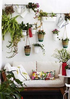 Crie um jardim vertical numa parede não usada para ficar com uma linda vista verde