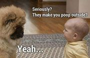 Seriously! They make you poop outside? You're killing me...