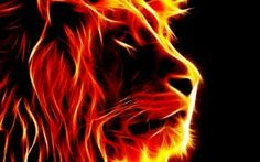 Find great deals on Framed Print - Fire Lion (Picture Poster Animal Tiger Flame Jungle Cat Art). Lion Wallpaper, Wallpaper Backgrounds, Laptop Backgrounds, Wallpaper Desktop, Colorful Wallpaper, Image Lion, Fire Lion, Amazing Animals, Jungle Cat