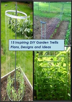 15 stunning and outstanding diy garden trellis ideas and plans.  #vegetable  #gardening
