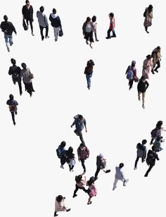 Architecture People, Concept Architecture, Model Gallery, Art Gallery, People Top View, People Png, People Cutout, Photoshop, Cute Cuts
