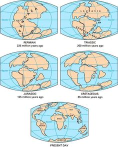 Pangaea Continent