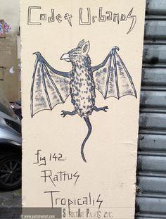 http://www.paristreetart.com/2013/07/bestiary-of-codex-urbanus.html #streetart #paris #codexurbanus