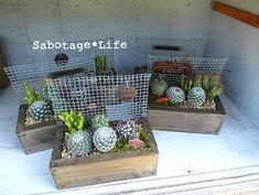 サボ寄せ - Sabotage*Life