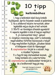Bimbóskel - gazigazito.hu Jaba, Garden Projects, Agriculture, Vegetable Garden, Gardening Tips, Backyard, How To Plan, Vegetables, Plants