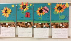 My kiddos had a great time making these sunflowers this week.  They loved the 3-D butterflies and bees!  They did such a terrific job writing about these as well. #plants#spring#writing#teaching ideas#education