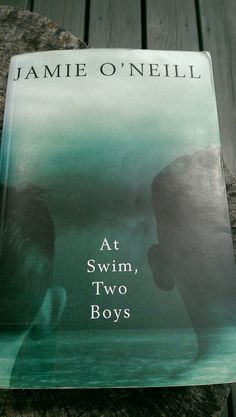 Huge volume of a book, very long story, but so often beautifully written like poetry. Two young boys, in Ireland in 1916, finding love at wartime in a unsettled country.
