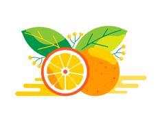 Orange illustration for Turbine Sport Drinks Design Ios, Graphic Design Art, Icon Design, Logo Design, Flat Design Illustration, Fruit Illustration, Design Thinking, Disney Canvas Art, Fruit Icons