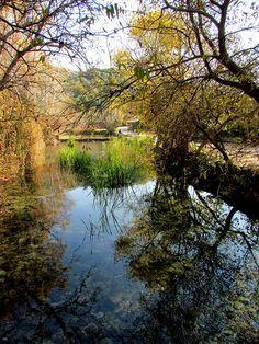 Sorgenti del fiume Giordano -... Israel, Santa, River, Outdoor, Outdoors, Outdoor Games, Outdoor Living, Rivers