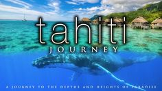4K TAHITI JOURNEY | Whales & Awesome Views in UHD w/ Music ©Nature Relax...