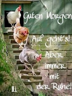 a picture for the heart Guten Morgen.jpg- One of 1435 files in de , a picture for the heart Guten Morgen.jpg- One of 1435 files in de Good Morning Picture, Morning Pictures, Good Morning Sunshine, Good Night, Gb Bilder, Greetings Images, Emoticon, Comics, Time Travel