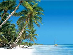 Flic en Flac, Mauritius - the most beautiful place I've ever been....