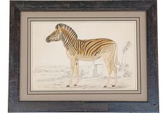 English chromolithograph by Oliver Goldsmith from A History Of The Earth and Animated Nature. Mounted in a handmade wood frame.