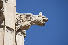 A Short History of Gargoyles Spain Images, Arts Ed, Architectural Features, Amazing Architecture, Lion Sculpture, Stock Photos, Statue, History, Illustration