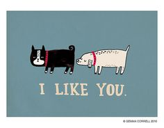 i like you, via Flickr.