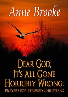 Dear God, It's All Gone Horribly Wrong: Prayers for Stressed Christians